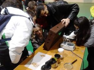 μελέτη των μελισσών και προϊόντα κυψέλης